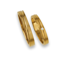 Wedding rings in yellow gold 18k rows surface model eg5330